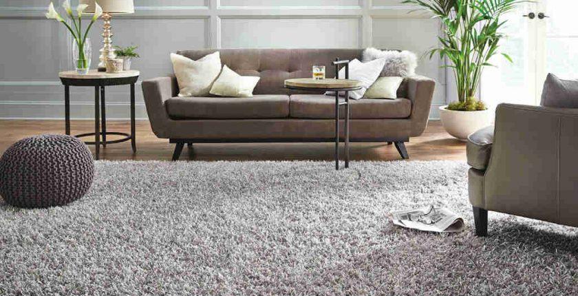 Choose Carpet